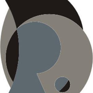 Custom Design Rug 14