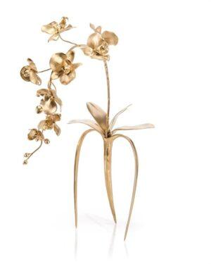 John Richard Brass Orchids III