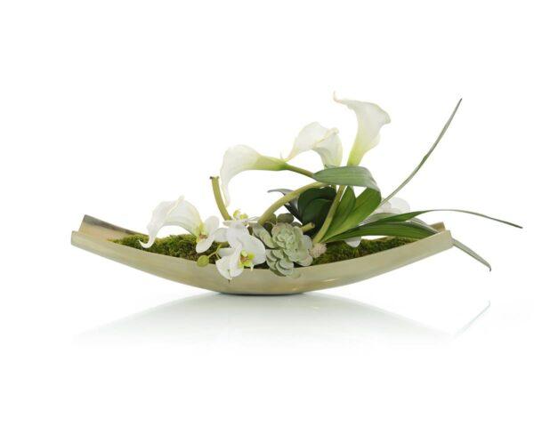 John Richard Exotic Flowers